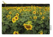 Sunflowers Panorama Carry-all Pouch