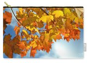 Sunlight And Shadow - Autumn Leaves Two Carry-all Pouch