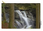 Sunlight On Bingham Falls Carry-all Pouch