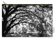Sunlight Through Spanish Oak Tree - Black And White Carry-all Pouch