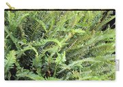 Sunlit Ferns Carry-all Pouch
