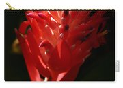 Sunlit Red Bromeliad 2 Carry-all Pouch