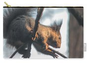 Sunlit Squirrel Carry-all Pouch