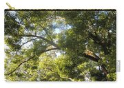 Sunlit Tree Tops Carry-all Pouch