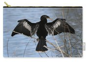 Sunning Anhinga Carry-all Pouch