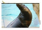 Sunning Sea Lion Carry-all Pouch