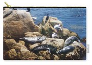 Sunning Seals Carry-all Pouch