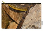 Sunning Snake Carry-all Pouch