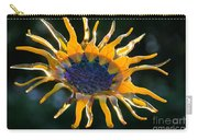 Sunny Glass Carry-all Pouch