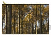 Sunny Larch Grove Carry-all Pouch