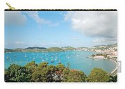 Sunny St Thomas Carry-all Pouch
