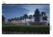 Sunrise Pineapple Fountain Carry-all Pouch