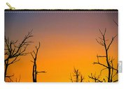 Sunset In Mesa Verde Carry-all Pouch
