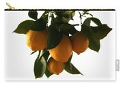 Sunset Lemons Carry-all Pouch