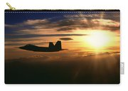 Sunset Of The Raptor Carry-all Pouch