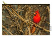 Sunset On A Norhern Cardinal Carry-all Pouch