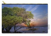 Sunset On Gandy Blvd  Carry-all Pouch