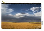 Sure Wish It Would Carry-all Pouch by Jon Burch Photography