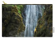 Susan Creek Falls Series 10 Carry-all Pouch