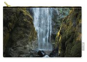 Susan Creek Falls Series 13 Carry-all Pouch