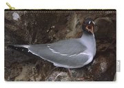 Swallow-tailed Gull And Chick Calling Carry-all Pouch by Tui De Roy