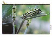 Swallowtail Caterpillars On Dillweed Carry-all Pouch