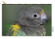 Sweet Baby Meyers Parrot Carry-all Pouch
