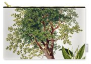 Sweet Chestnut Carry-all Pouch by Johann Kautsky