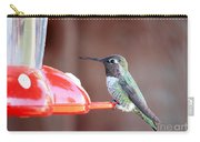Sweet Little Hummingbird On Feeder Carry-all Pouch