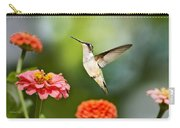 Sweet Promise Hummingbird Carry-all Pouch