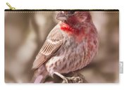 Sweet Songbird Carry-all Pouch