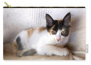 Sweet The Kitten Carry-all Pouch