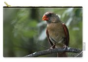Sweet Young Cardinal Carry-all Pouch