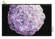 Swine Vesicular Disease Virus Carry-all Pouch