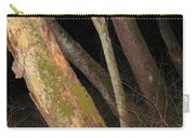 Sycamore Nightscape Carry-all Pouch