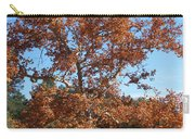 Sycamore Tree In Fall Colors Carry-all Pouch