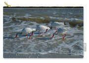 Synchronized Beach Combing Carry-all Pouch