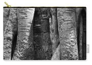 Ta Prohm Roots And Stone 04 Carry-all Pouch