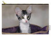 Tabby Kitten In A Purple Bed Carry-all Pouch