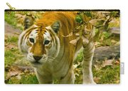 Tabby Tiger IIi Carry-all Pouch