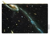 Tadpole Galaxy Carry-all Pouch