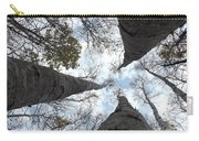 Tall Birches Carry-all Pouch