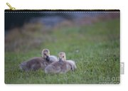 Cuddly Fury Babies Carry-all Pouch