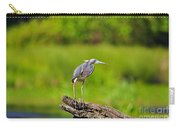 Tantalizing Tricolored Carry-all Pouch by Al Powell Photography USA