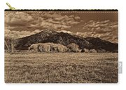 Taos Mountain In Platinum  Carry-all Pouch