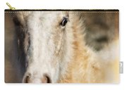 Taos Pony X Carry-all Pouch