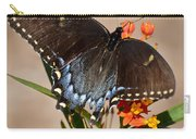 Tattered Tails Carry-all Pouch