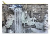 Taughannock Falls Carry-all Pouch by Lori Deiter