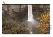 Taughannock Falls Park Carry-all Pouch
