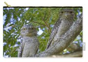 Tawny Frogmouths Carry-all Pouch